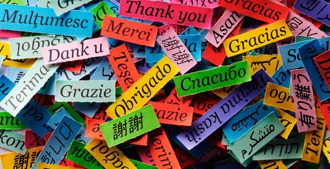 Translated Languages